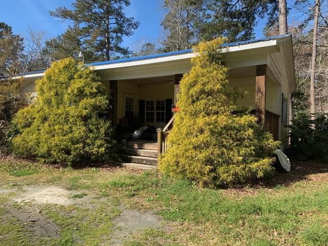 201 Deer Trail, Beaufort, NC 28516 (MLS #100209957) :: Barefoot-Chandler & Associates LLC