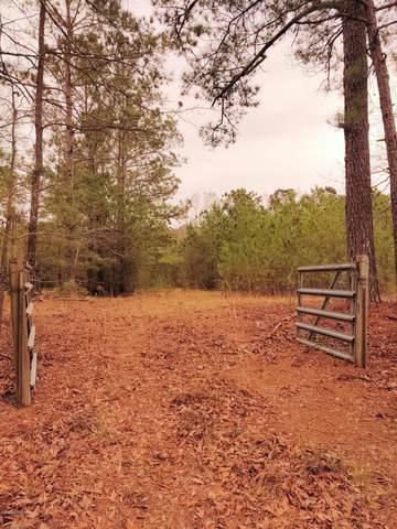1601 Poplar Branch Trail, Bolivia, NC 28422 (MLS #100210804) :: Lynda Haraway Group Real Estate