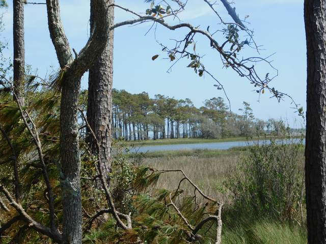 1308 Barnacle Lane, Morehead City, NC 28557 (MLS #100211047) :: Barefoot-Chandler & Associates LLC