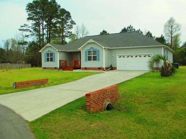 302 Robert Scott Circle, Swansboro, NC 28584 (MLS #100211308) :: RE/MAX Essential