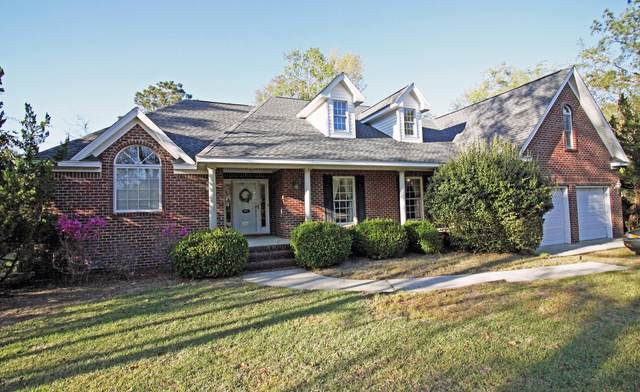 209 Shearwater Drive, Hampstead, NC 28443 (MLS #100212238) :: RE/MAX Elite Realty Group