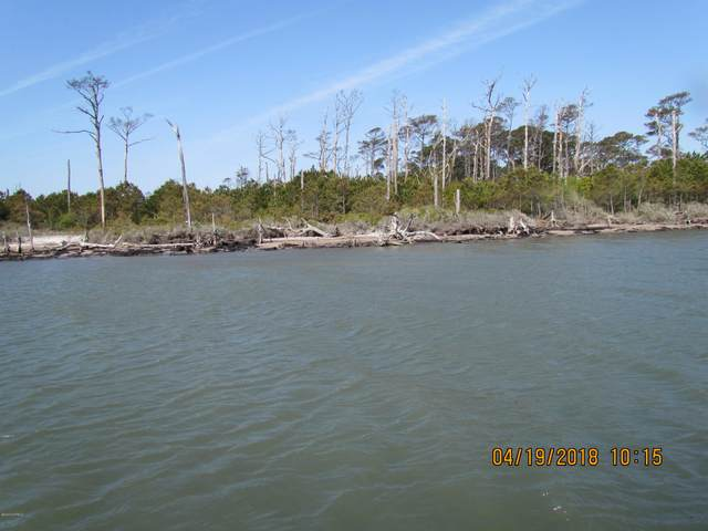 0000 Browns Island, Harkers Island, NC 28531 (MLS #100212515) :: Thirty 4 North Properties Group