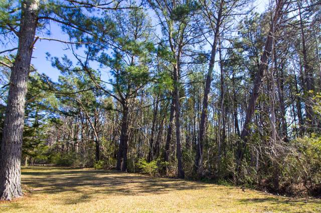 226 Wildwood Road, Newport, NC 28570 (MLS #100212536) :: Frost Real Estate Team