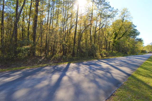 Lot 43 Lakeshore Drive, Minnesott Beach, NC 28510 (MLS #100212689) :: Thirty 4 North Properties Group