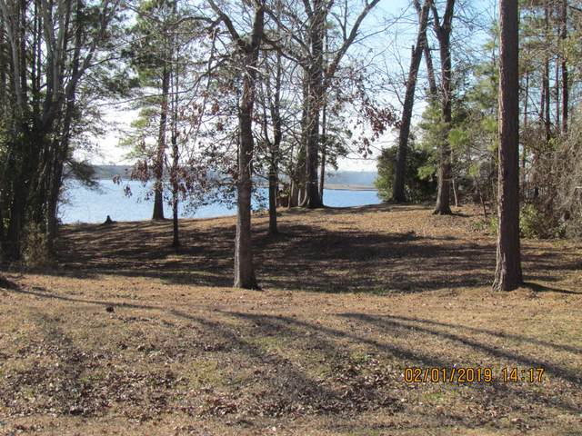 120 White Oak Bluff Road, Stella, NC 28582 (MLS #100214181) :: The Tingen Team- Berkshire Hathaway HomeServices Prime Properties