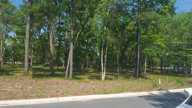 650 Wild Rose Way, Southport, NC 28461 (MLS #100214217) :: Castro Real Estate Team
