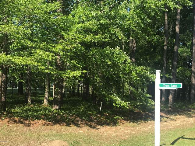 123 Trent Lane, Chocowinity, NC 27817 (MLS #100214632) :: Berkshire Hathaway HomeServices Prime Properties