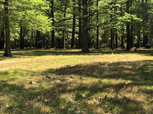 Lot 9 Wood Duck Road, Washington, NC 27889 (MLS #100217423) :: The Chris Luther Team