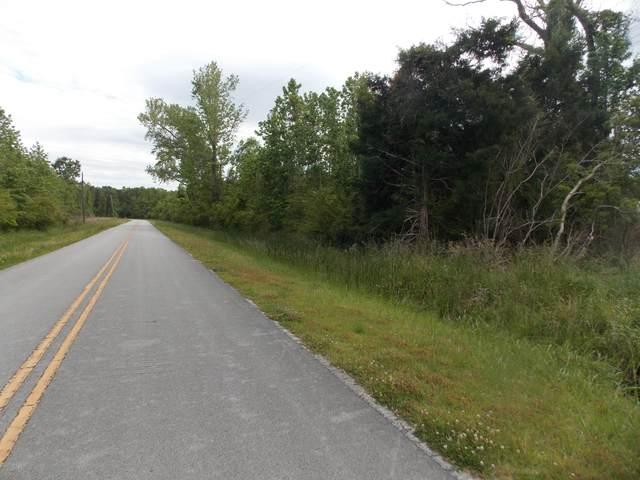 73 Upper Neck Road, Bayboro, NC 28515 (MLS #100217484) :: RE/MAX Elite Realty Group
