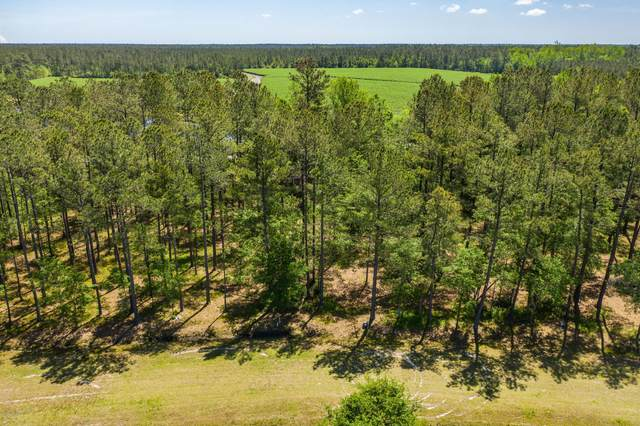 Lot 20 E Waverly Drive, Burgaw, NC 28425 (MLS #100217782) :: CENTURY 21 Sweyer & Associates