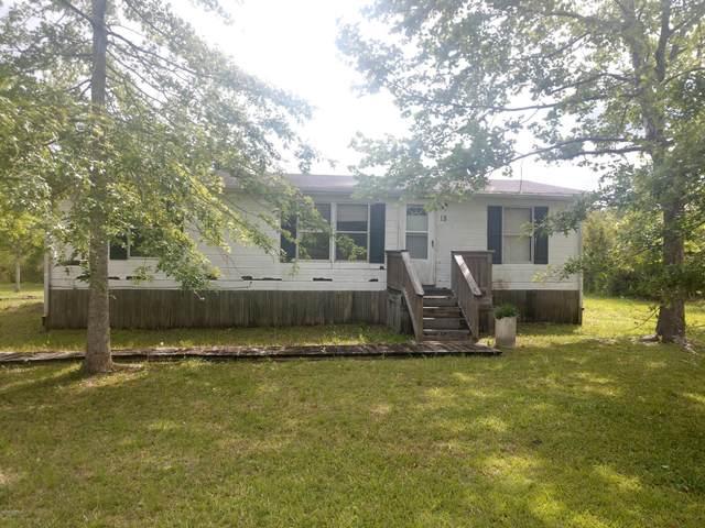 18 Scuba Drive, Hampstead, NC 28443 (MLS #100218551) :: Vance Young and Associates