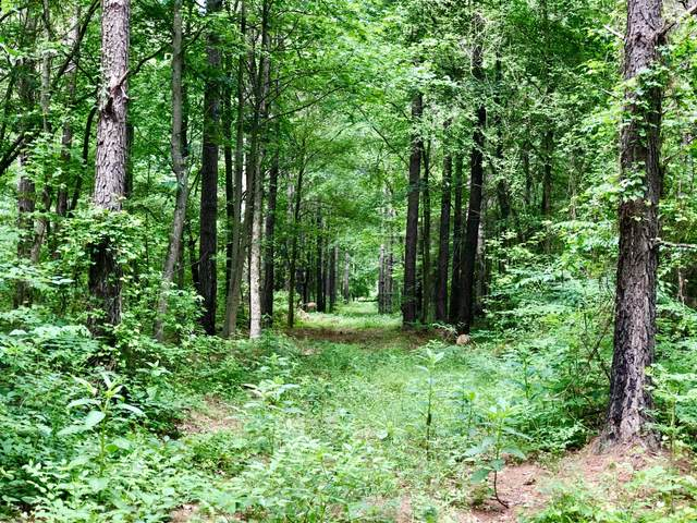 Lot #1 W J Duke Road, Rich Square, NC 27869 (MLS #100219469) :: David Cummings Real Estate Team