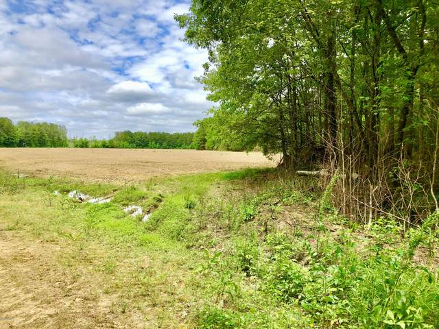 Lot #1 W W J Duke Service Road, Lasker, NC 27845 (MLS #100219506) :: RE/MAX Essential