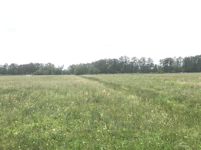 Lot 85 Dallas Paul Road, Belhaven, NC 27810 (MLS #100219913) :: RE/MAX Essential