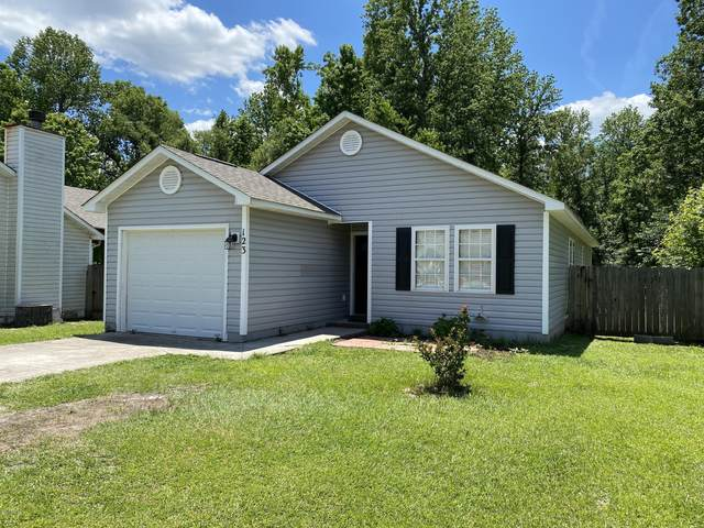 123 Sweetwater Drive, Jacksonville, NC 28540 (MLS #100220034) :: RE/MAX Elite Realty Group