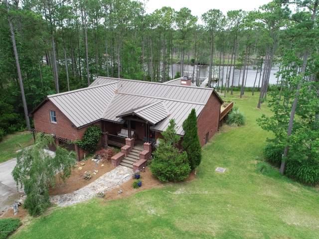 469 Point Of View Drive, Merritt, NC 28556 (MLS #100222538) :: CENTURY 21 Sweyer & Associates