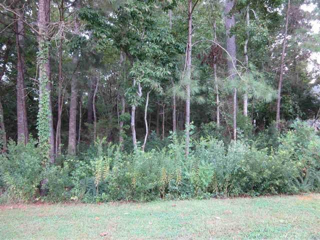 104 Bonita Lane, Swansboro, NC 28584 (MLS #100223318) :: Carolina Elite Properties LHR