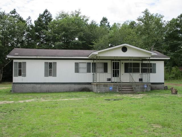 9100 Tartan Road, Laurinburg, NC 28352 (MLS #100223801) :: The Keith Beatty Team