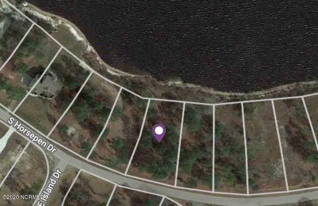 584 S Horse Pen Road, Harrells, NC 28444 (MLS #100223975) :: Donna & Team New Bern