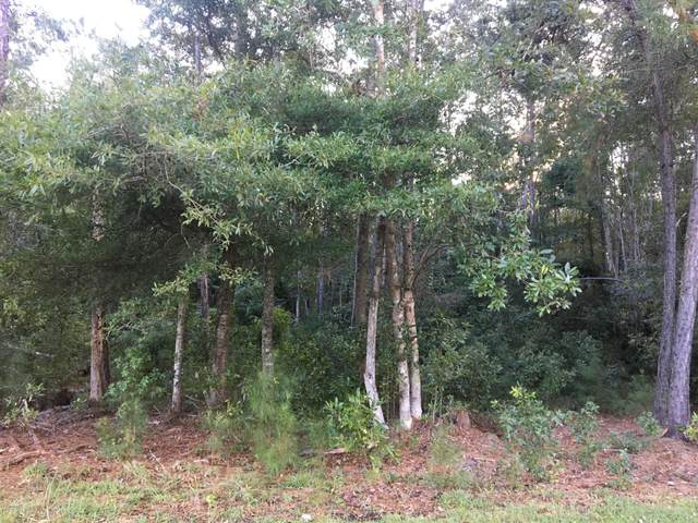 15-S, 16-S Oak Road Road, Lake Waccamaw, NC 28450 (MLS #100224000) :: The Cheek Team