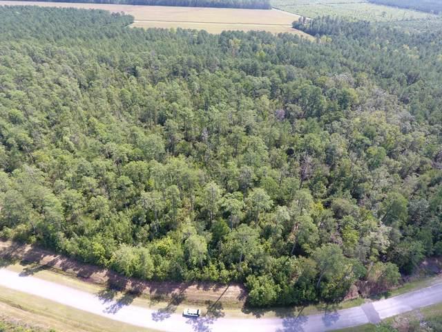 Lot 63 Arant Farm Road, Merritt, NC 28556 (MLS #100224095) :: CENTURY 21 Sweyer & Associates
