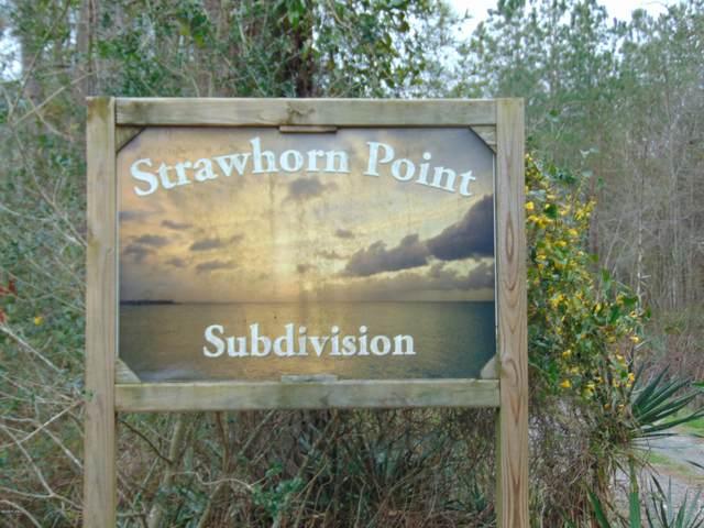 20 Strawhorn Drive, Aurora, NC 27806 (MLS #100224583) :: CENTURY 21 Sweyer & Associates