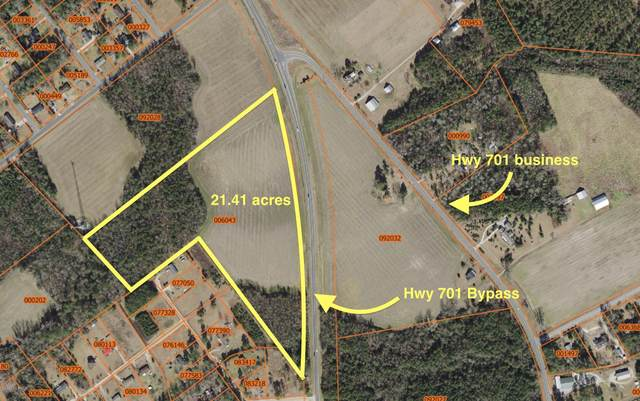 1603 701 Bypass Highway, Whiteville, NC 28472 (MLS #100224923) :: Carolina Elite Properties LHR
