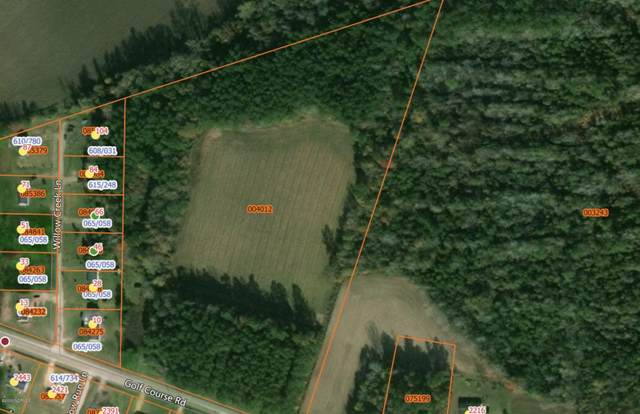 Tbd Golf Course, Whiteville, NC 28472 (MLS #100225959) :: Stancill Realty Group