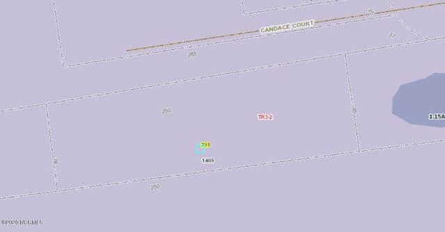 303 Newport Loop Road, Newport, NC 28570 (MLS #100226002) :: Barefoot-Chandler & Associates LLC
