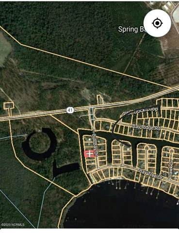 164 Bull Bay Drive, Harrells, NC 28444 (MLS #100226508) :: Coldwell Banker Sea Coast Advantage