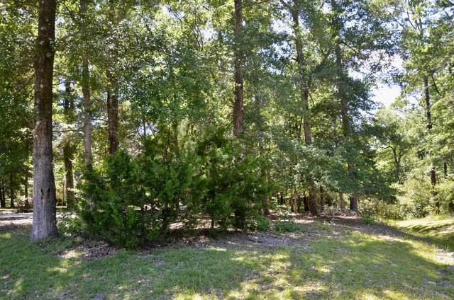 1845 Harbours Edge Lane SW, Supply, NC 28462 (MLS #100227916) :: The Keith Beatty Team