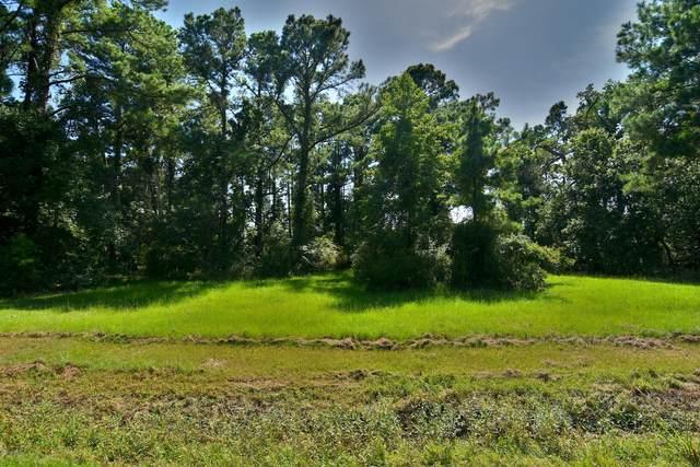 1890 White Farm Road, Oriental, NC 28571 (MLS #100228933) :: The Chris Luther Team