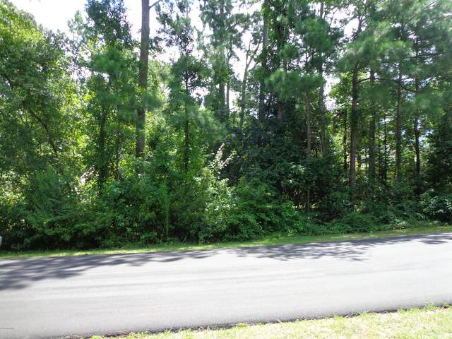 46 Canvasback Point, Hampstead, NC 28443 (MLS #100229056) :: Lynda Haraway Group Real Estate