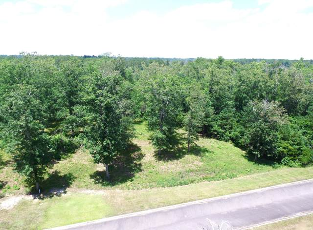 334 Levies Landing SW, Supply, NC 28462 (MLS #100229244) :: Thirty 4 North Properties Group