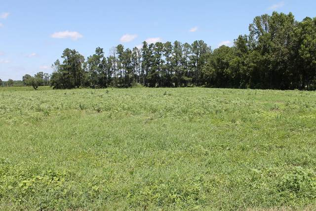 Lot#4 Andrew Jackson Highway, Cerro Gordo, NC 28430 (MLS #100230006) :: The Chris Luther Team