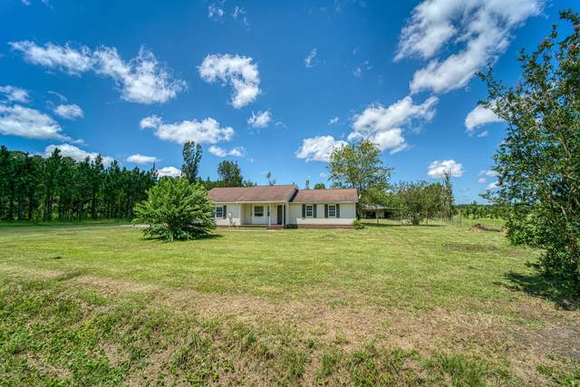 510 Luther Banks Road, Richlands, NC 28574 (MLS #100230227) :: Courtney Carter Homes