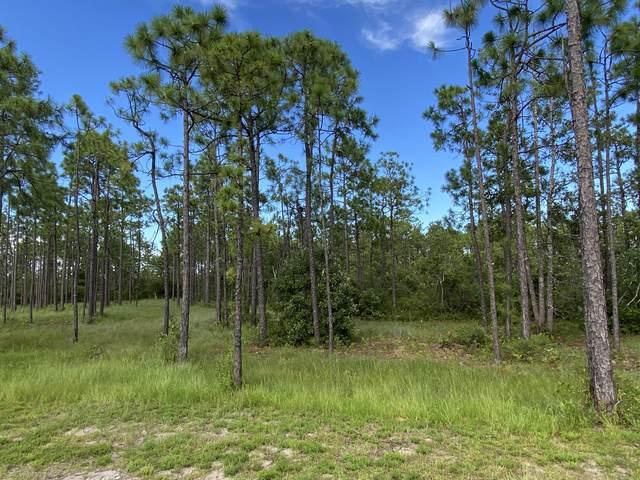 3062 Moss Hammock, Southport, NC 28461 (MLS #100231302) :: Lynda Haraway Group Real Estate