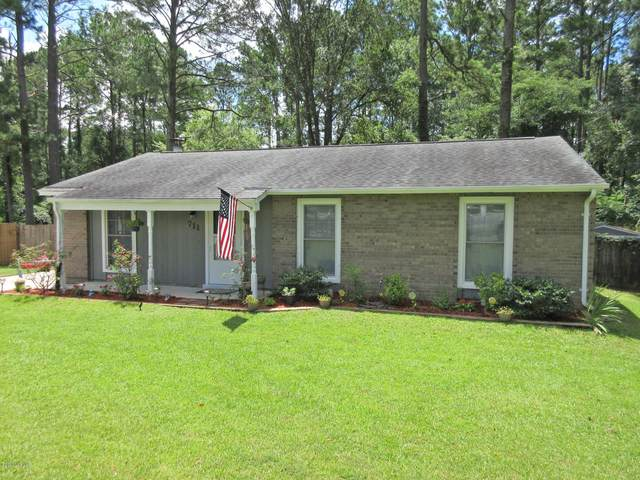 711 Terrace Court, Jacksonville, NC 28546 (MLS #100231341) :: David Cummings Real Estate Team