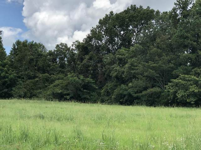3330 Mccaskey Road, Williamston, NC 27892 (MLS #100231481) :: David Cummings Real Estate Team