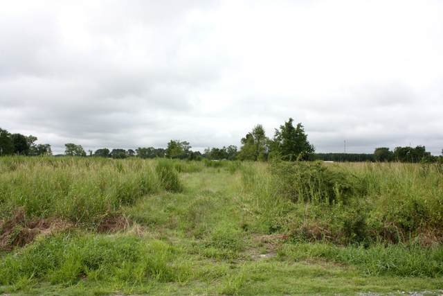 2378 Radford Lane, Greenville, NC 27834 (MLS #100231603) :: Berkshire Hathaway HomeServices Prime Properties