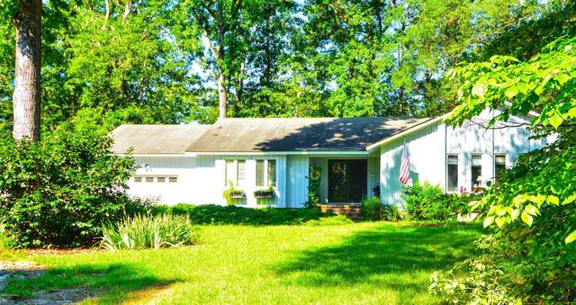 316 Shoreline Drive, New Bern, NC 28562 (MLS #100231748) :: David Cummings Real Estate Team