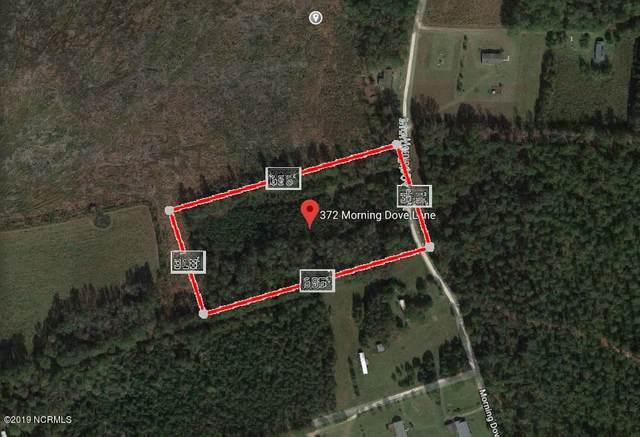 372 Morning Dove Lane, Willard, NC 28478 (MLS #100231976) :: Donna & Team New Bern