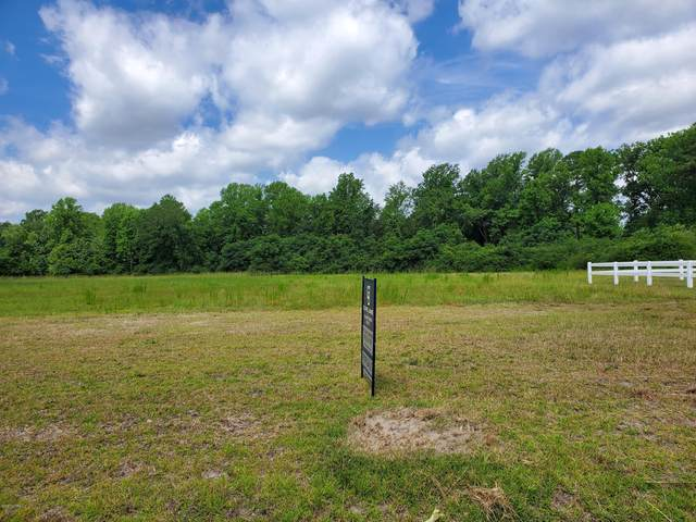 910 Haw Branch Road, Beulaville, NC 28518 (MLS #100232414) :: The Keith Beatty Team