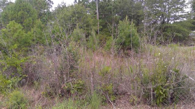 299 Bohica Drive, Elizabethtown, NC 28337 (MLS #100232814) :: Courtney Carter Homes