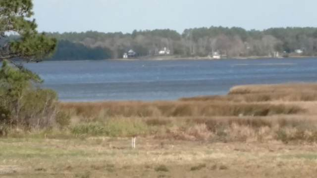 411 S Plantation Lane, Swansboro, NC 28584 (MLS #100232888) :: David Cummings Real Estate Team