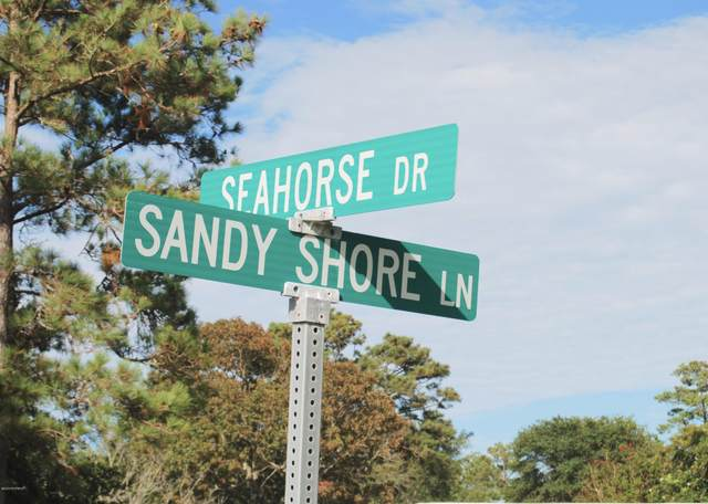 300 Sandy Shore Lane, Swansboro, NC 28584 (MLS #100233400) :: Berkshire Hathaway HomeServices Hometown, REALTORS®