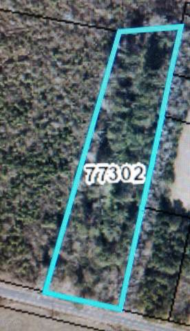 00 Whitehurst Station Road, Robersonville, NC 27871 (MLS #100233545) :: CENTURY 21 Sweyer & Associates