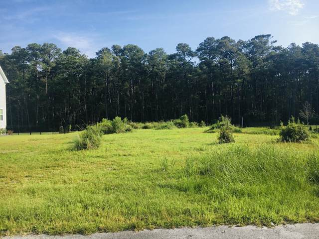 1112 Blair Farm Parkway, Morehead City, NC 28557 (MLS #100234237) :: RE/MAX Elite Realty Group