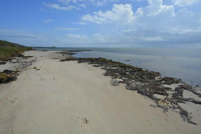 1320 Island Road, Harkers Island, NC 28531 (MLS #100234447) :: The Keith Beatty Team