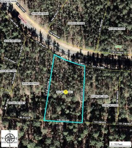 31 Wildlife Lane, Wagram, NC 28396 (MLS #100236593) :: Lynda Haraway Group Real Estate